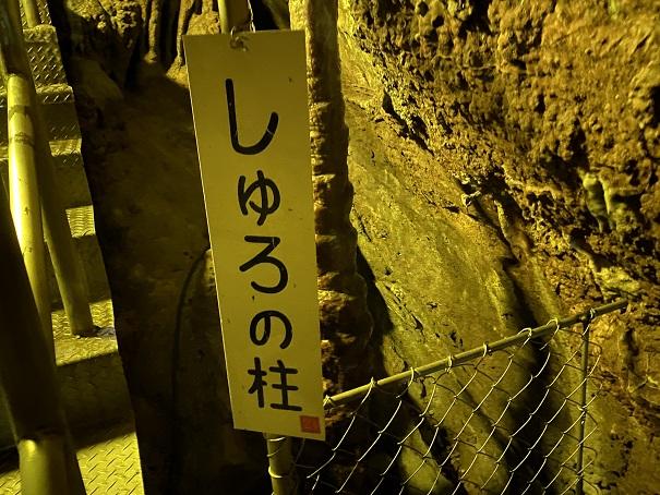井倉洞 しゅろの柱