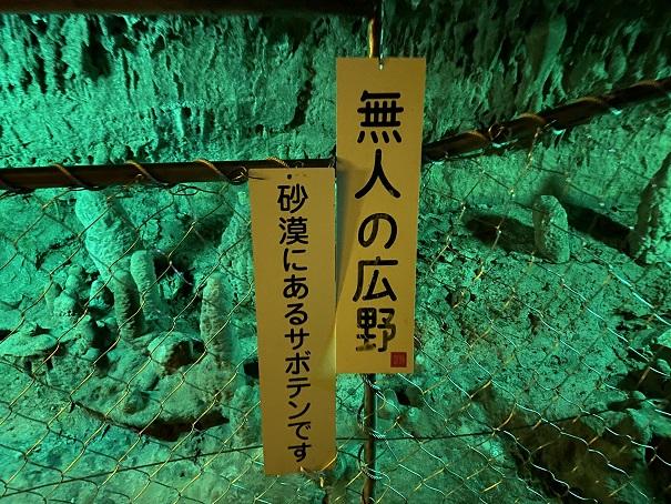 井倉洞 無人の広野