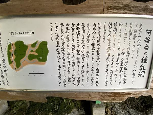 井倉洞 鍾乳洞の説明1