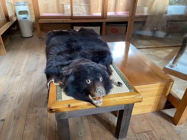 グリーン・パークほどの 熊の毛皮