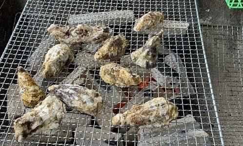 オイスタロー観音寺店がアオハタ鮮魚店内2FにNEWオープン 観音寺市