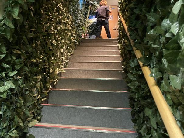 倉敷どうぶつの森 入口階段