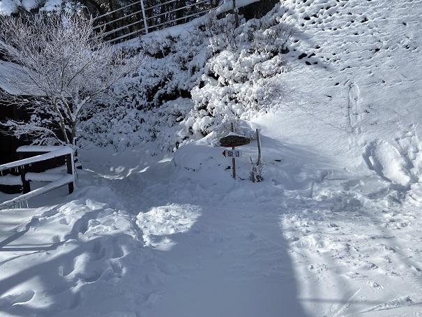 石鎚スキー場 第1リフト頂上