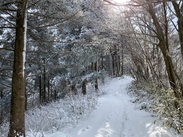 石鎚神社への雪道2