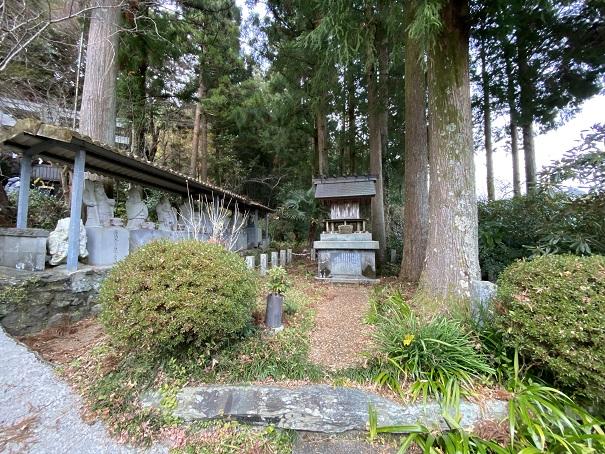 杉の大杉 入口