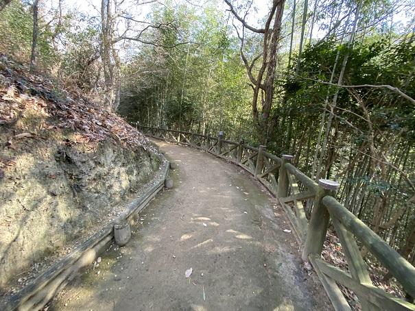 土柱下への道