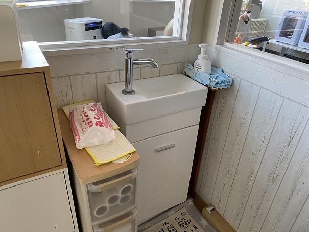 保護猫カフェ moco moco手洗い