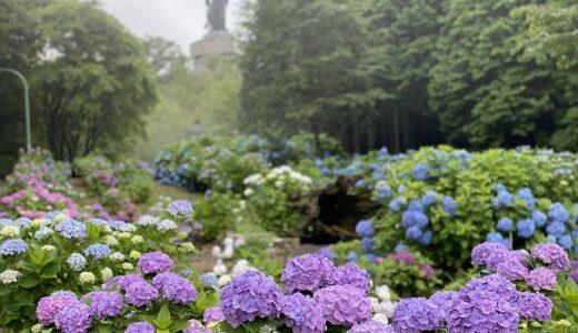 香川県のおすすめあじさいスポット11選 神社 寺 山 公園