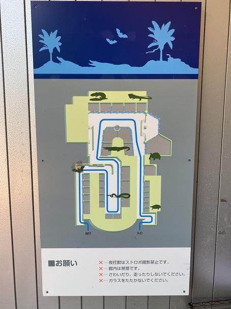 愛媛県立とべ動物園 スネークハウス案内図