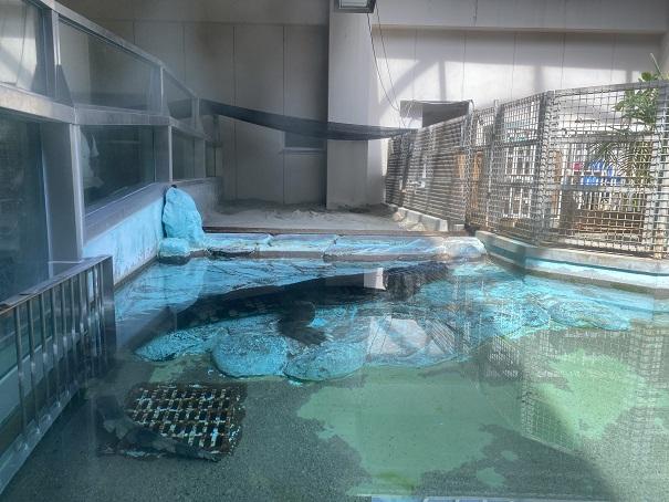 愛媛県立とべ動物園 マレーガヒル