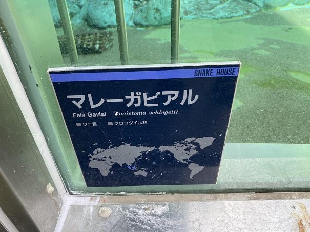 愛媛県立とべ動物園 マレーガヒル案内