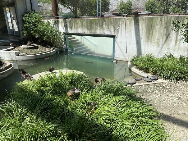 愛媛県立とべ動物園 鳥舎