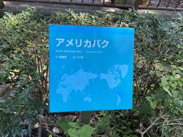 愛媛県立とべ動物園 アメリカバク案内