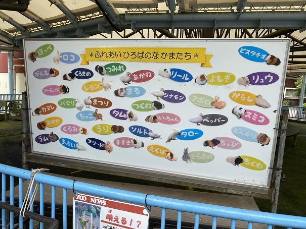 愛媛県立とべ動物園 ふれあいひろばの仲間たち