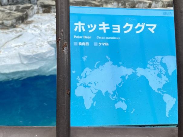 愛媛県立とべ動物園 ホッキョクグマ案内