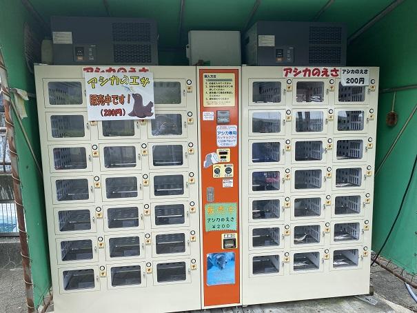 愛媛県立とべ動物園 アシカの餌