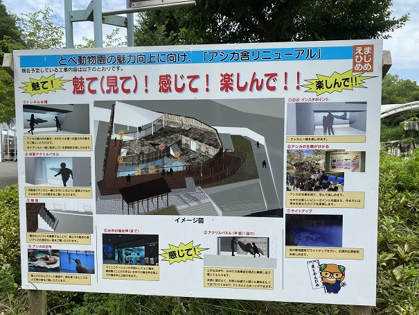 愛媛県立とべ動物園 アシカ舎リニューアル