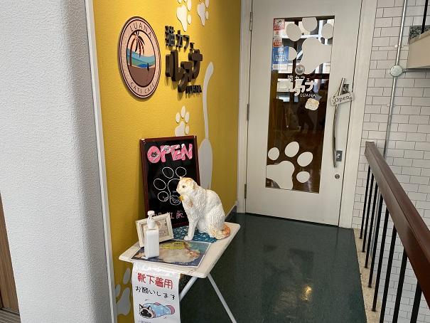 猫カフェルアナ 入口