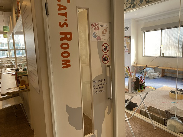 猫カフェルアナ 猫部屋