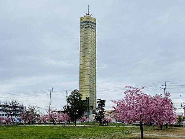 さくらの広場 ゴールドタワー