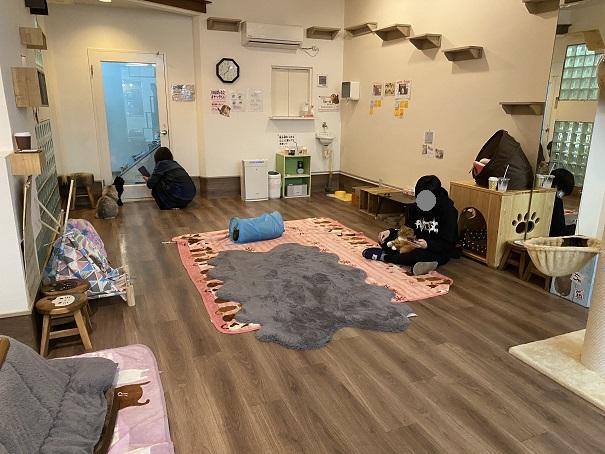 猫カフェRONRON 店内