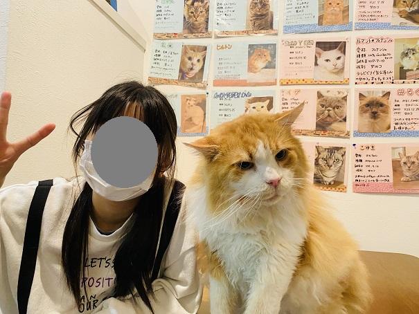 猫カフェRONRON ネネットお座り