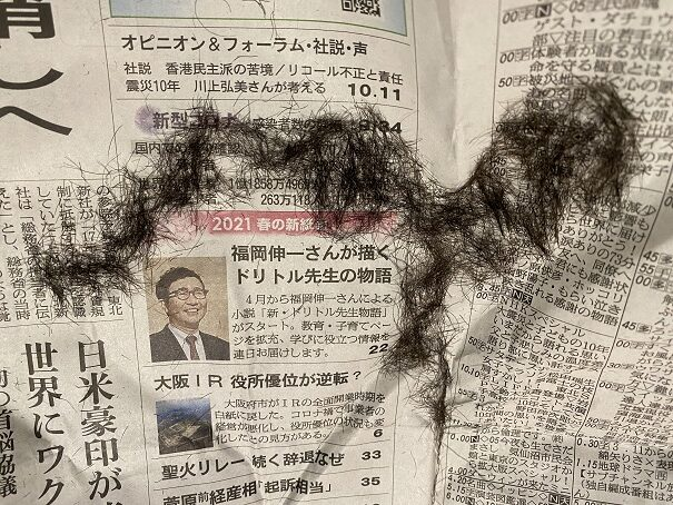 ケノン 毛剃り跡