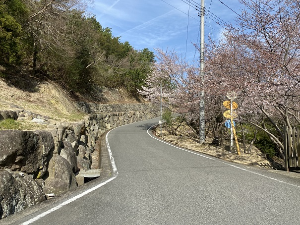 国民宿舎小豆島への道