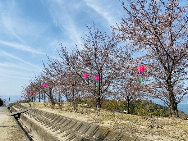 城山桜公園 最終駐車場前