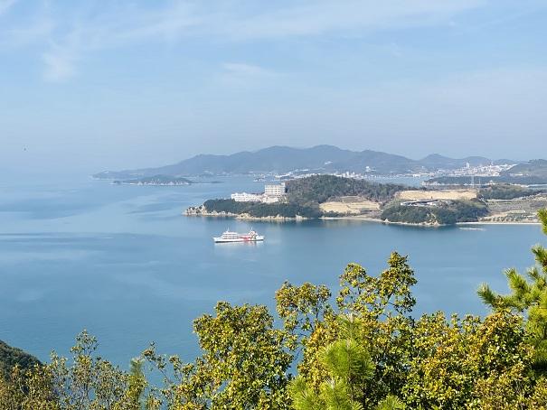 城山桜公園 展望台からの景色