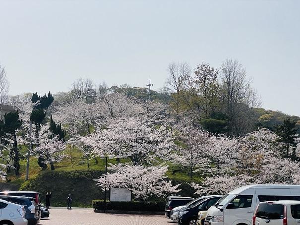 県立桃陵公園 ふれあい広場広場