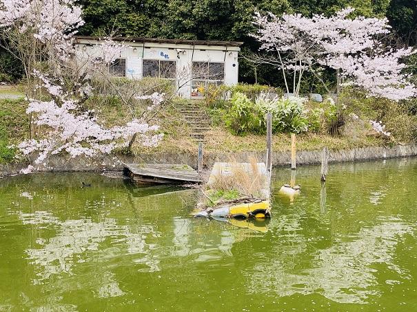 亀鶴公園 ボート乗り場