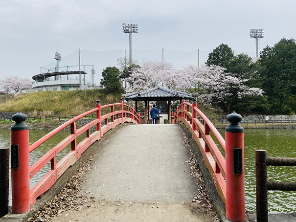 亀鶴公園 さくら橋2