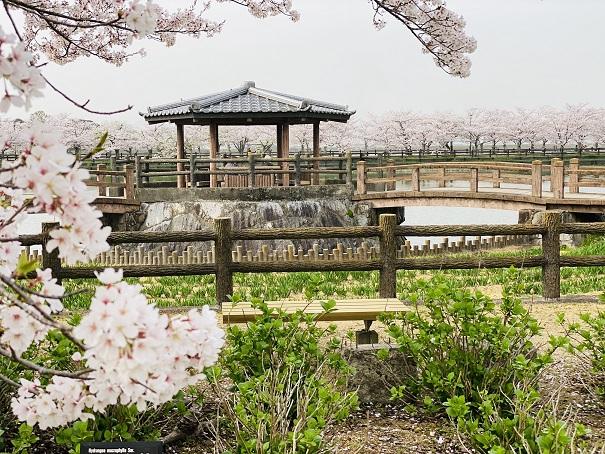 亀鶴公園 休憩所