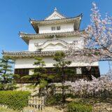丸亀城の桜の花見
