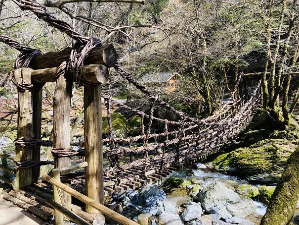 奥祖谷二重かずら橋女橋