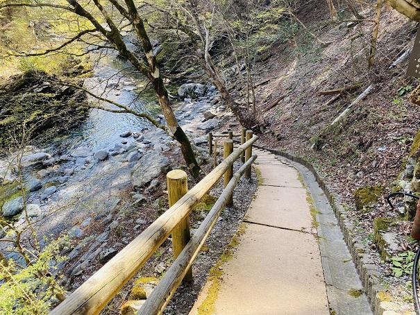 奥祖谷二重かずら橋川へ降りる道