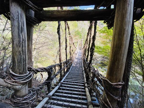 奥祖谷二重かずら橋男橋