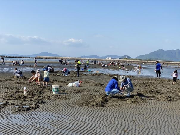 マテ貝掘りと潮干狩り