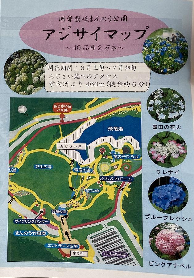国営讃岐まんのう公園 あじさいマップ