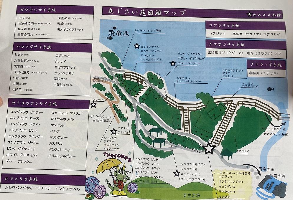 国営讃岐まんのう公園 アジサイ園回遊マップ