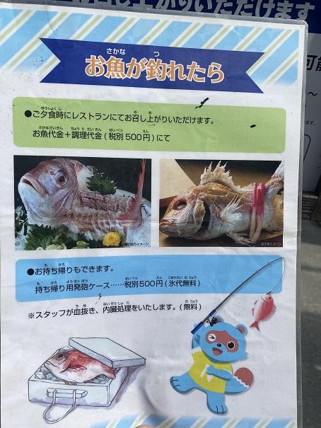 アオアヲナルトリゾート 魚が釣れたら