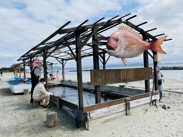 アオアヲナルトリゾート 釣り堀2