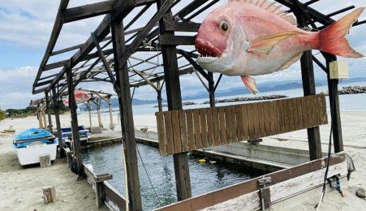 アオアヲナルトリゾート 釣り堀体験 プールと海水浴 遊び 鳴門市