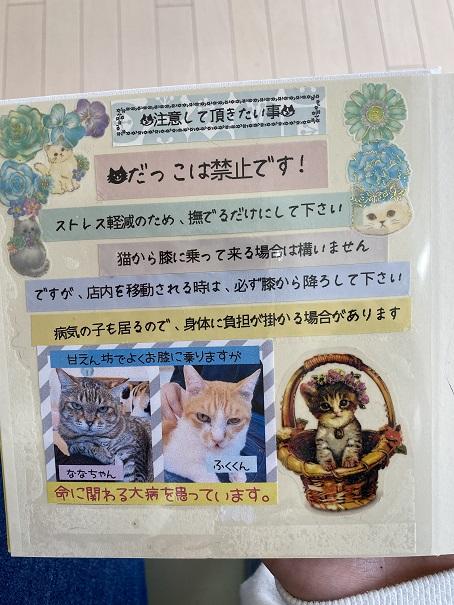 猫カフェnoa ルール1