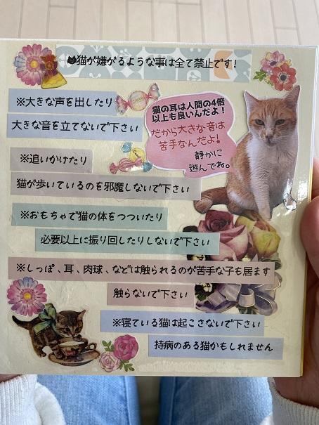 猫カフェNOA ルール2