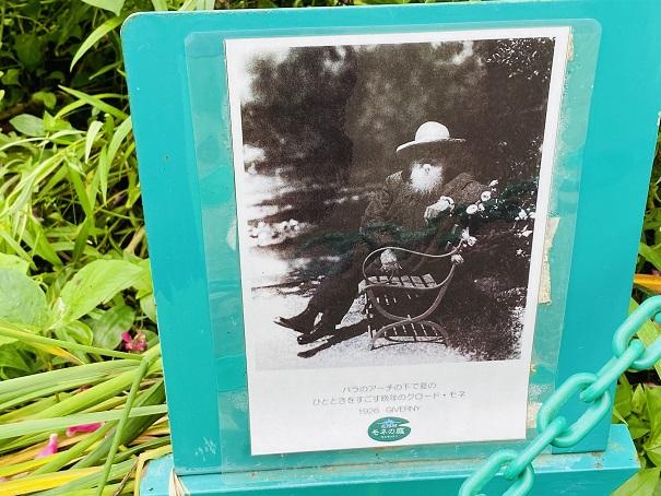 モネの庭 モネの写真花のアーチの下で