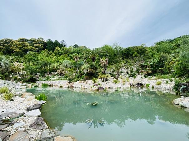 モネの庭 ボルディゲラの庭 池