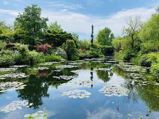 モネの庭 睡蓮の咲く池