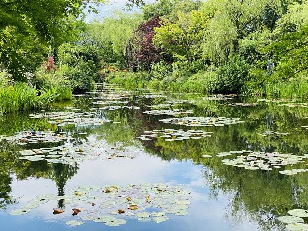 モネの庭 水の庭 睡蓮の